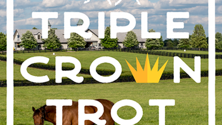 Triple Crown Trot 5K: Shirt Deadline AND Price Increase